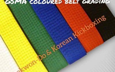 Coloured belt grading – Taekwon-Do & Korean Kickboxing