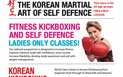 Ladies self defence classes
